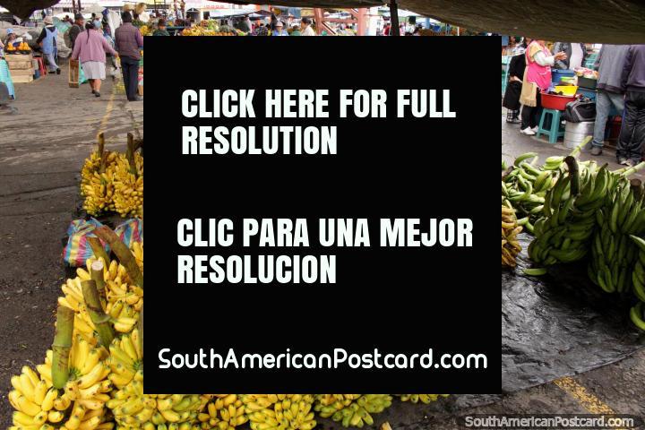 Bananas near and far, buy them at Pujili market, 15mins from Latacunga. (720x480px). Ecuador, South America.