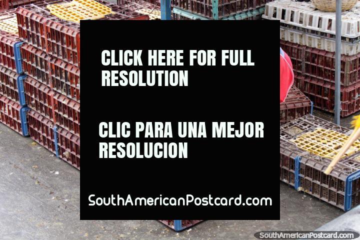 Pollos proporcionan comida, pero son tratados como basura en el mercado de Saquisilí, ¿por qué? (720x480px). Ecuador, Sudamerica.