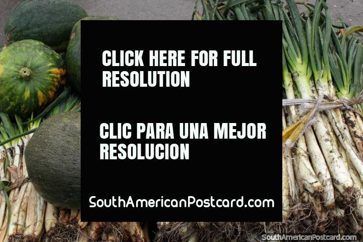 Cebolas de primavera e squash, pronto para ação em mercado de Saquisili. (720x480px). Equador, América do Sul.