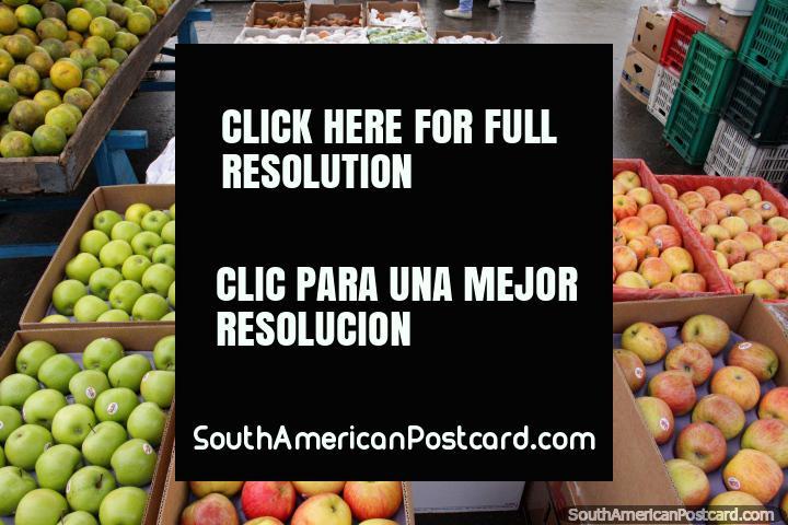 Una buena variedad de manzanas de todos los colores en el mercado de Saquisilí. (720x480px). Ecuador, Sudamerica.