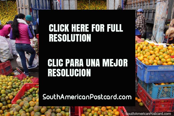 As laranjas transbordam das costas de caminhões no mercado de Saquisili. (720x480px). Equador, América do Sul.