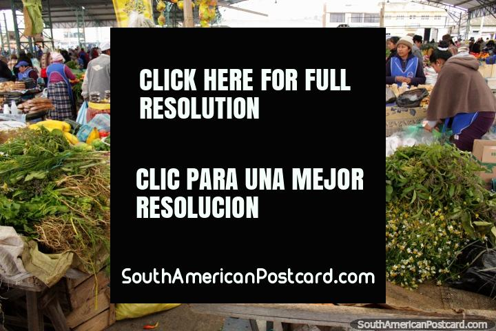 Plaza Kennedy has lots of fresh vegetables to buy at Saquisili. (720x480px). Ecuador, South America.