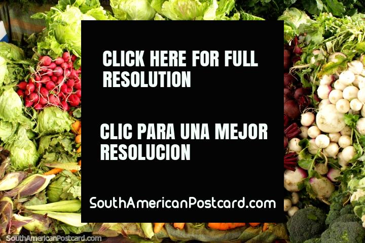 Carrots, beetroot, radish, broccoli and lettuce at Saquisili market. (720x480px). Ecuador, South America.