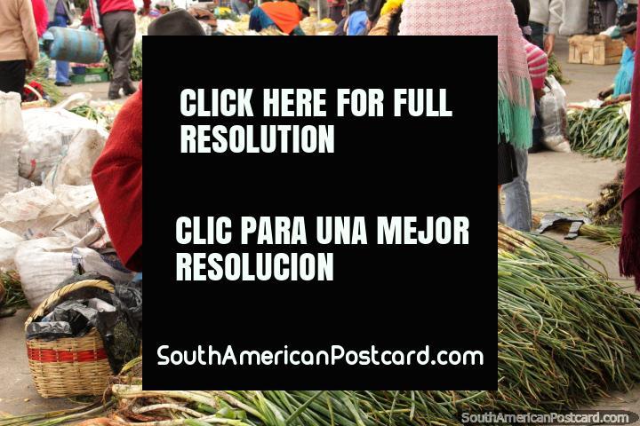 Hombre en el sombrero y el chal come arroz y vende cebollas de primavera en la Plaza Kennedy, Saquisilí. (720x480px). Ecuador, Sudamerica.
