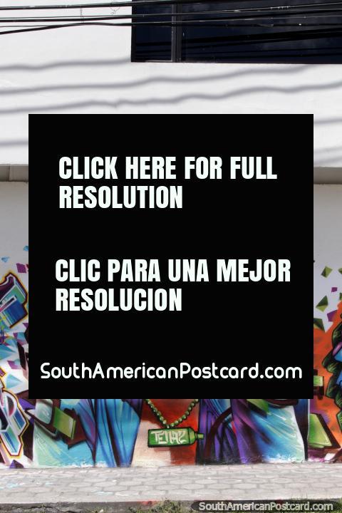 Uma mulher profundamente em pensamento, mural em Machachi. (480x720px). Equador, América do Sul.