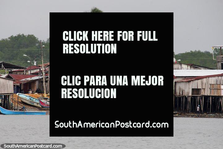 Grupo desvencijado de casas de madera sobre pilotes, con botes y una palmera, costa de San Lorenzo. (720x480px). Ecuador, Sudamerica.