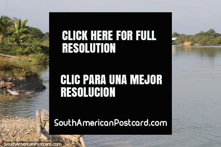 Um pulo gigantesco da humanidade, o rapaz jovem pula no rio em Esmeraldas. (720x480px). Equador, América do Sul.