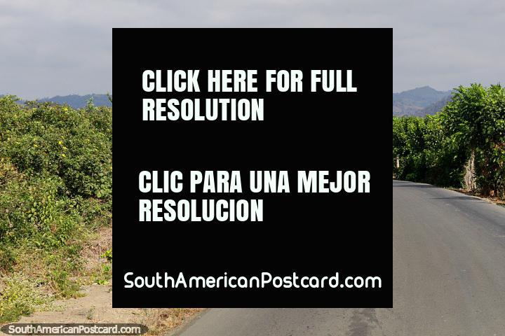 O caminho entre praia de El Matal e Jama com montanhas distantes, 5 passeio de um minuto. (720x480px). Equador, América do Sul.