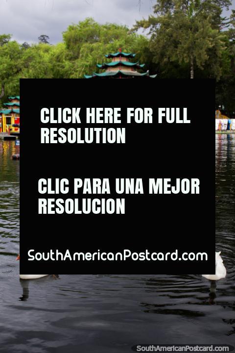 Templo chinês e lagoa com patos em Parque Recreativo de Jipiro em Loja. (480x720px). Equador, América do Sul.