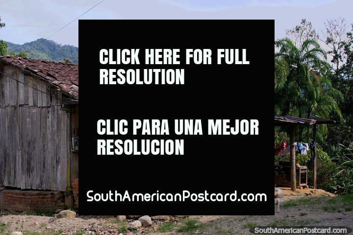 Casa de madera con techo de tejas, palmeras y colinas, la selva que vive en Yantzaza. (720x480px). Ecuador, Sudamerica.