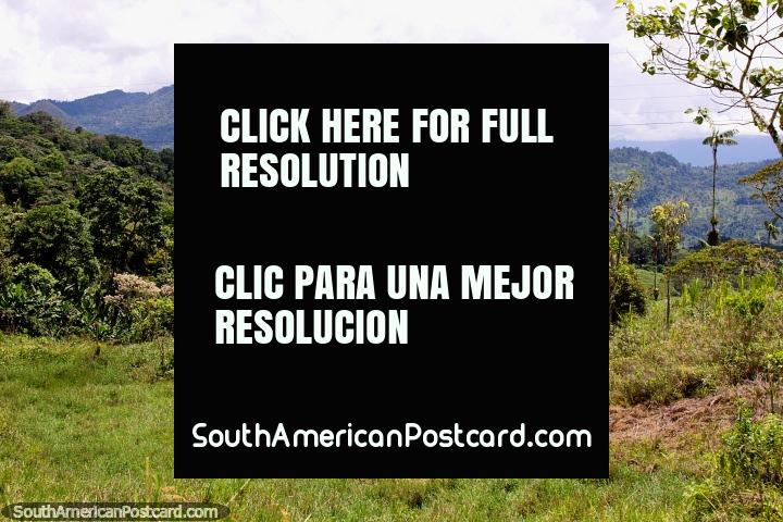 Belas montanhas, colinas e zona rural verde ao norte de Gualaquiza. (720x480px). Equador, América do Sul.