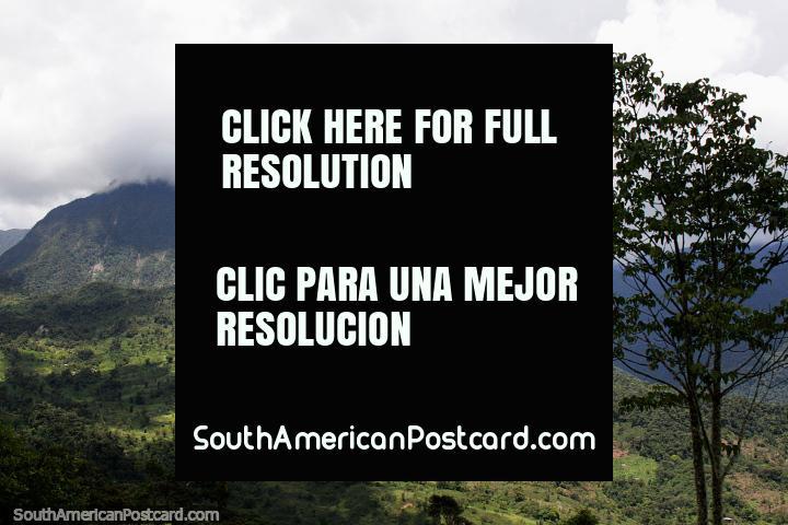 Huge mountain between Tucumbatza and San Juan Bosco, north of Gualaquiza. (720x480px). Ecuador, South America.