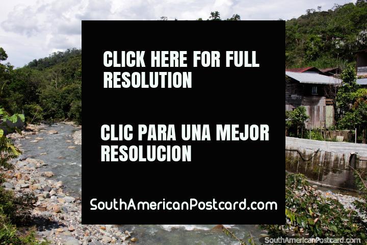 As casas de madeira espalharam-se entre árvores gordas na ladeira no rio em Limon. (720x480px). Equador, América do Sul.