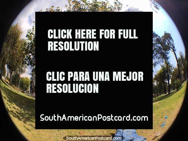 Parque La Alameda em Quito é um grande lugar de descansar abaixo de árvores, uma cidade de muitos bons parques. (640x480px). Equador, América do Sul.