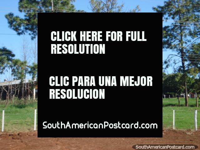 Establos y granja entre Ciudad del Este y La Colmena. (640x480px). Paraguay, Sudamerica.