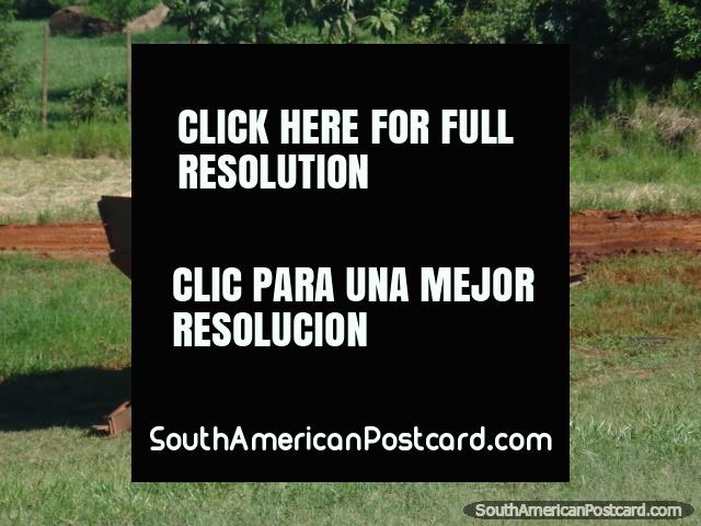 Wooden cart in the countryside between Ciudad del Este and La Colmena. (640x480px). Paraguay, South America.