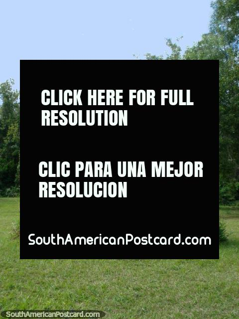Estatua de hombre con espada, Parque Nacional de Ybycui. (480x640px). Paraguay, Sudamerica.