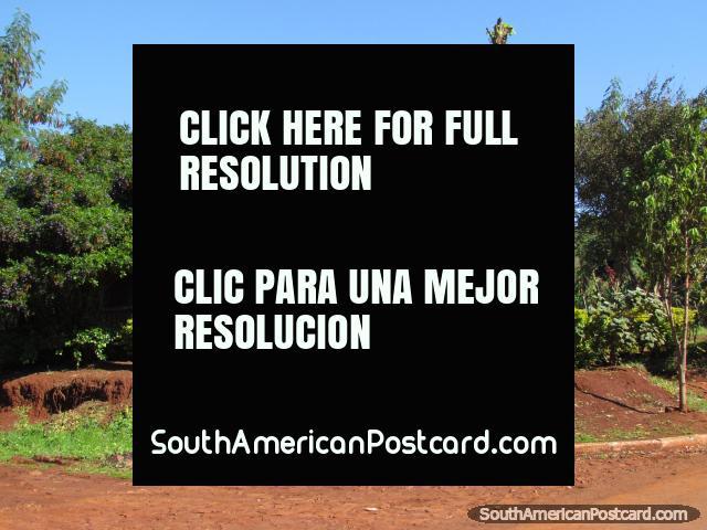 Una casa agradable y propiedad con árboles en Jesús, cerca de Encarnacion. (640x480px). Paraguay, Sudamerica.