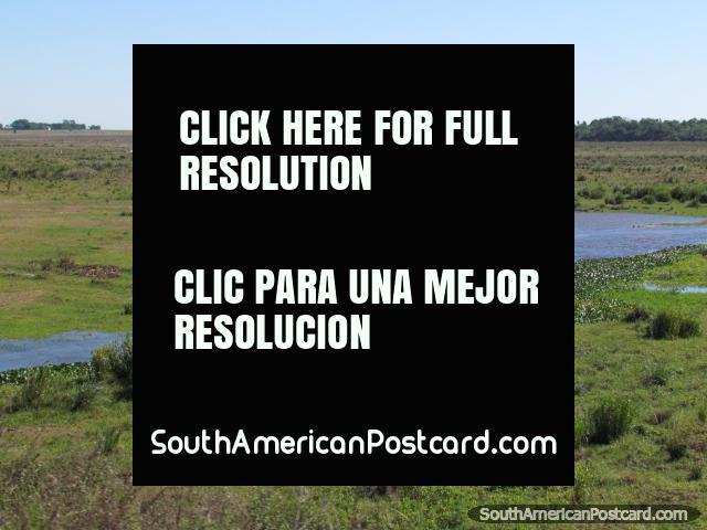 Um cavaleiro monta na distância perto da terra alagadiça entre Coronel Bogado e o General Delgado. (640x480px). Paraguai, América do Sul.