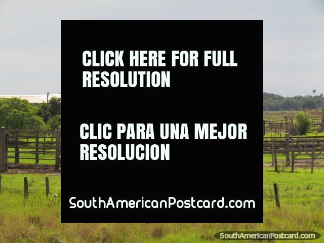 Cercas de madera y puertas por una granja en Gran Chaco. (640x480px). Paraguay, Sudamerica.