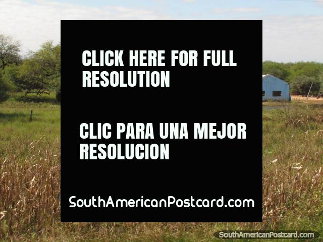 A property and land in the Gran Chaco wilderness. (640x480px). Paraguay, South America.