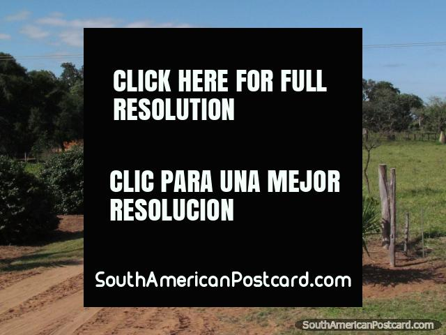 Entrance to a nice looking ranch in the Gran Chaco. (640x480px). Paraguay, South America.