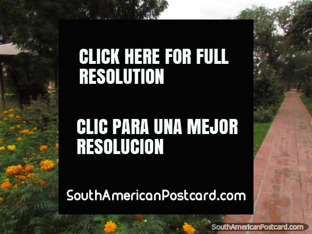 Park Parque de la Memoria in Filadelfia, flower gardens and trees. (640x480px). Paraguay, South America.