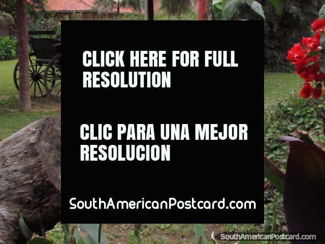 Uma velha carruagem de cavalo e jardins de flores no parque em Filadelfia. (640x480px). Paraguai, América do Sul.