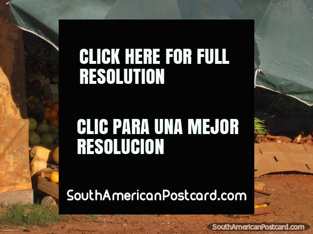 Laranjas e melões de venda nos mercados de Concepcion. (640x480px). Paraguai, América do Sul.
