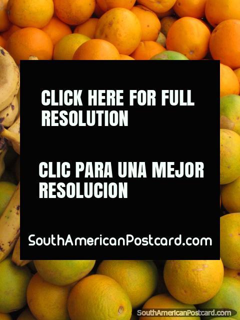 Oranges and bananas, Concepcion markets. (480x640px). Paraguay, South America.