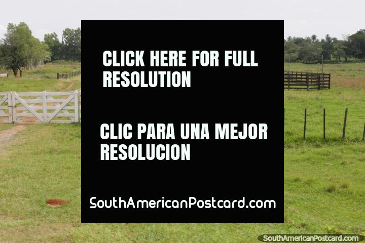 A beautiful farm with a great entrance and lots of land, south of Oviedo. (720x480px). Paraguay, South America.
