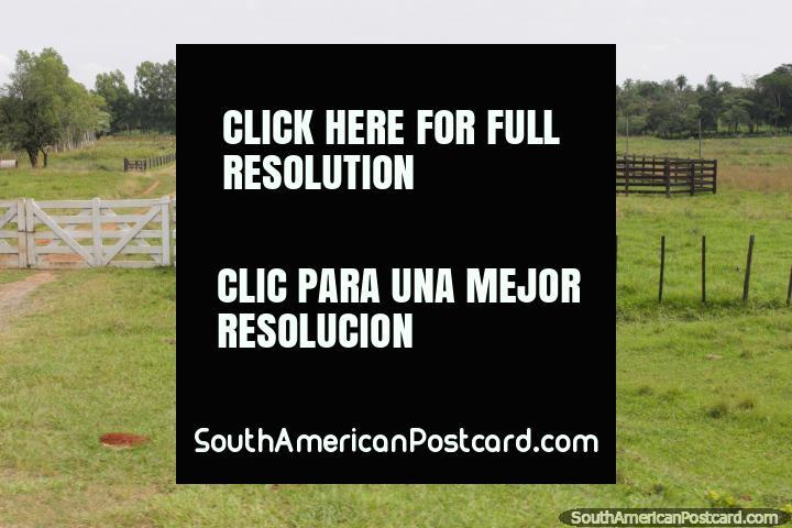 Una hermosa finca con una gran entrada y un montón de tierra, al sur de Oviedo. (720x480px). Paraguay, Sudamerica.