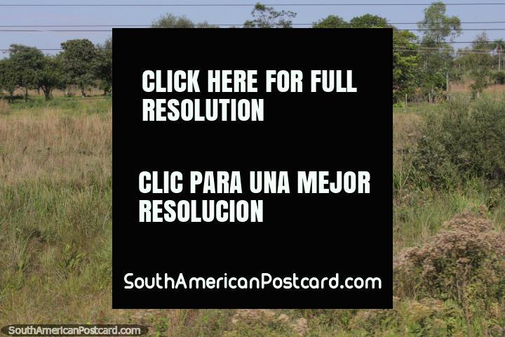 Pequeña casa escondido en la vida privada en el campo, al norte de Villarrica. (720x480px). Paraguay, Sudamerica.