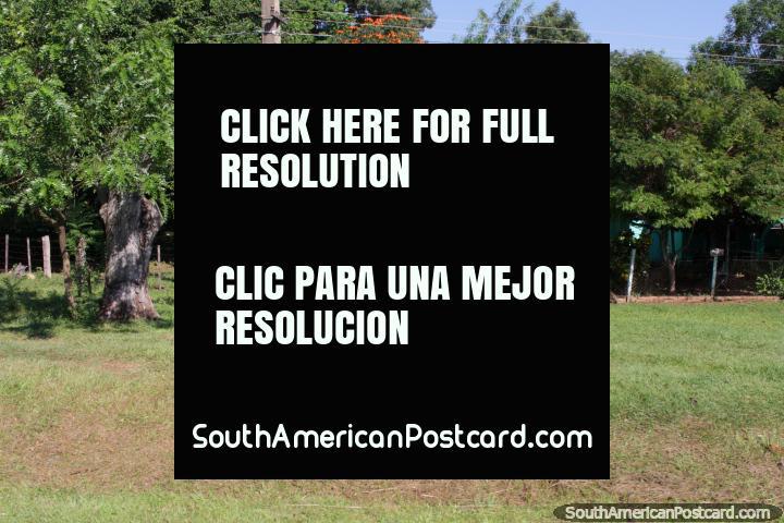 Los Paraguayos saben cómo vivir que la vida tranquila en el país, simple y hermoso, al sur de Oviedo. (720x480px). Paraguay, Sudamerica.