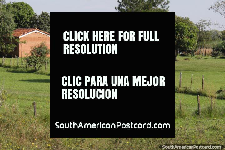 Impresionantes zonas verdes fuera de una casa muy bonita en el campo al sur de Coronel Oviedo. (720x480px). Paraguay, Sudamerica.