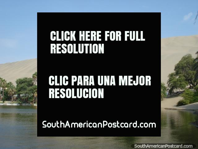The Huacachina lagoon with huge sand dunes behind. (640x480px). Peru, South America.