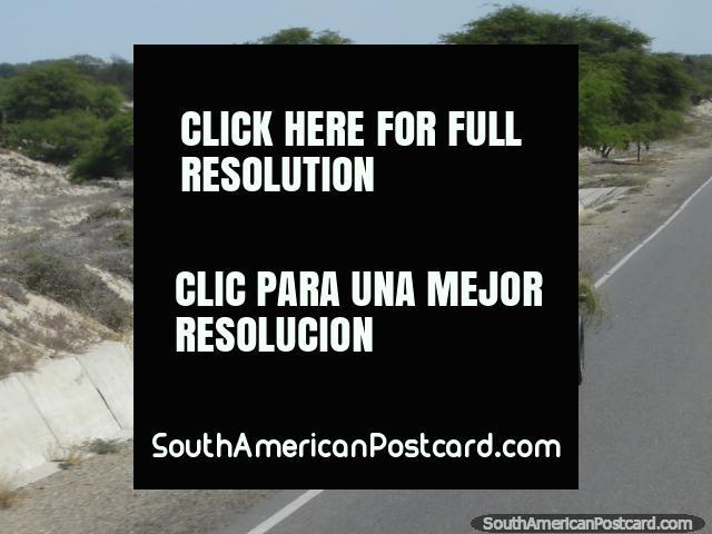 Carro tirado por el caballo en la carretera del Panamericana al sur de Piura. (640x480px). Perú, Sudamerica.