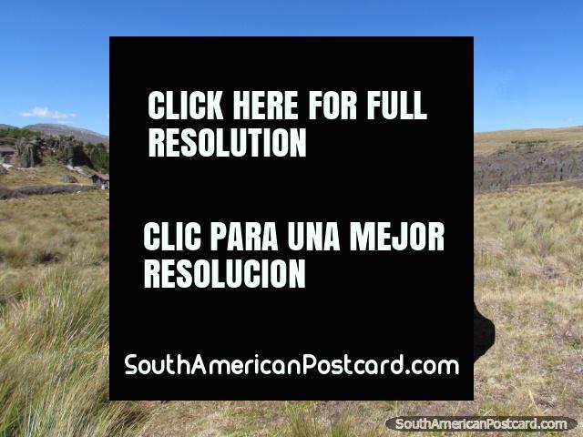 Hijos campesinos locales de Cumbemayo y su cordero, Cajamarca. (640x480px). Perú, Sudamerica.