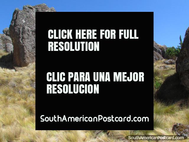 Cumbemayo rock gardens in Cajamarca. (640x480px). Peru, South America.