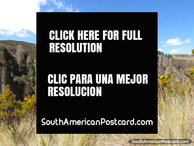Beautiful rock gardens at the amazing Cumbemayo. (640x480px). Peru, South America.