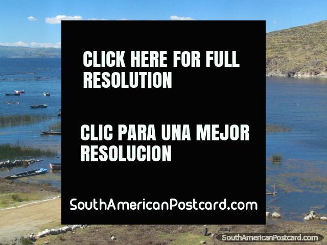 A wharf and beautiful bay near Zepita at Lake Titicaca. (640x480px). Peru, South America.