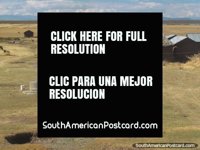 A simple farm with Lake Titicaca in the distance near Juli. (640x480px). Peru, South America.