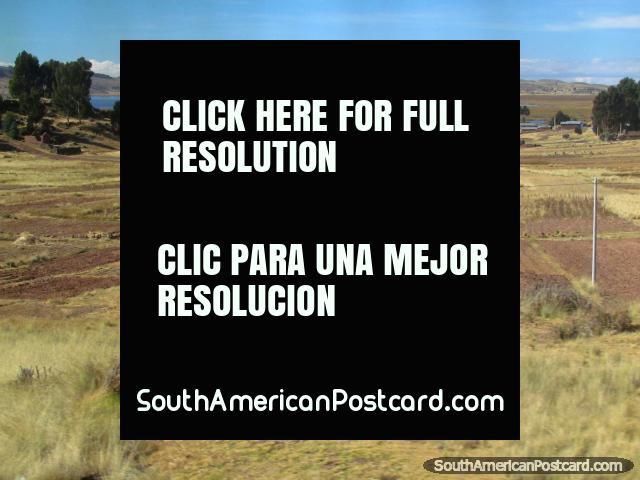 Farms and crop fields around Lake Titicaca near Huisahuinica. (640x480px). Peru, South America.