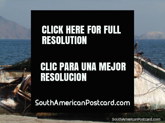 Os pássaros sentam-se no naufrágio na terra a margem de água em Chimbote. (640x480px). Peru, América do Sul.