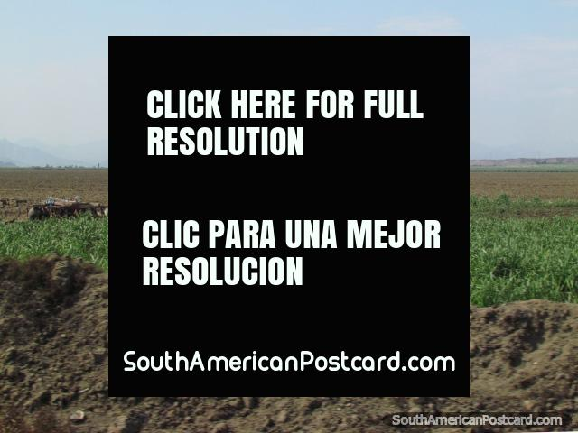 Tractores en los campos entre Trujillo y Paijan. (640x480px). Perú, Sudamerica.