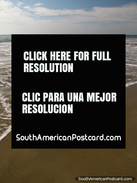 Shell na praia, olhando para fora a mar em Mancora. (480x640px). Peru, América do Sul.