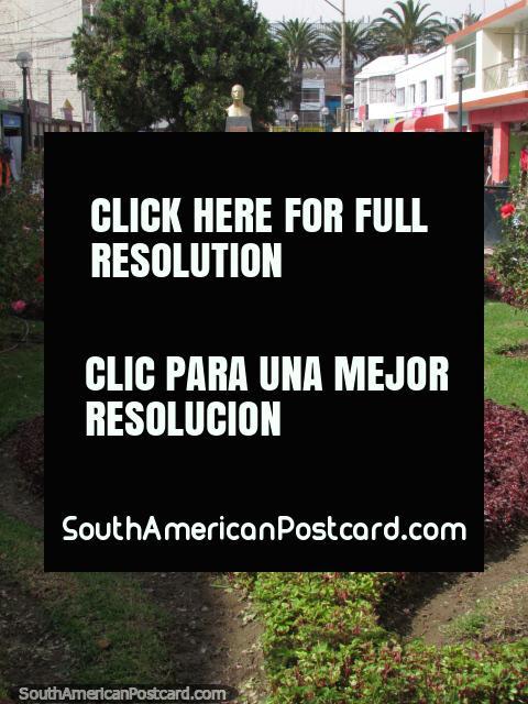 Jardines y flores en Vigilia Pasaje en Tacna. (480x640px). Perú, Sudamerica.