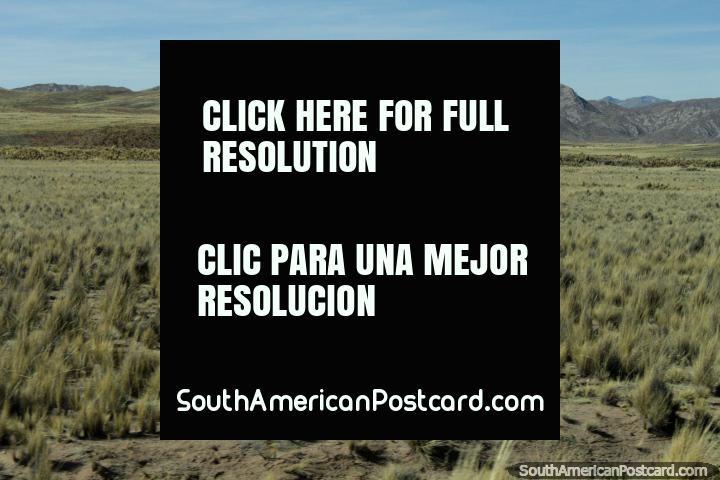 Pastos desolados e colinas rochosas entre Torata e Desaguadero. (720x480px). Peru, América do Sul.