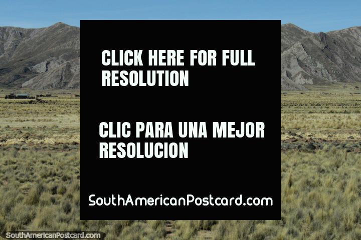 West of Desaguadero, near the border of Peru and Bolivia. (720x480px). Peru, South America.