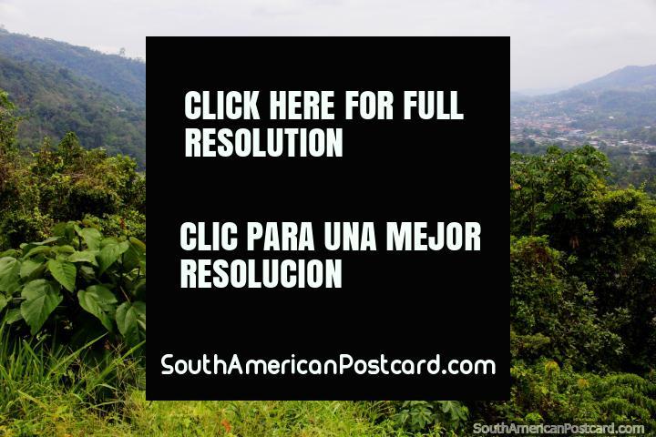 Visão de Tingo Maria de Miradouro Jacintillo, a cidade e rio. (720x480px). Peru, América do Sul.